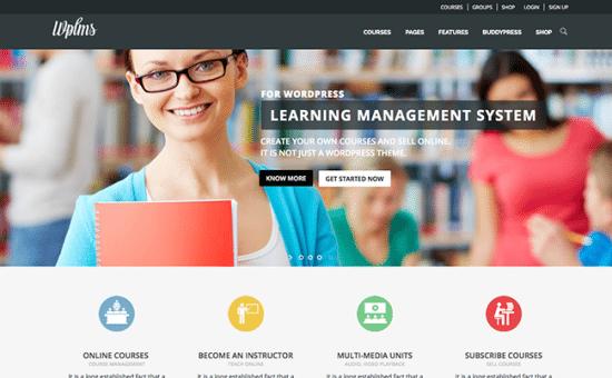 5 WordPress temas para crear una comunidad en línea | BlogPasCher