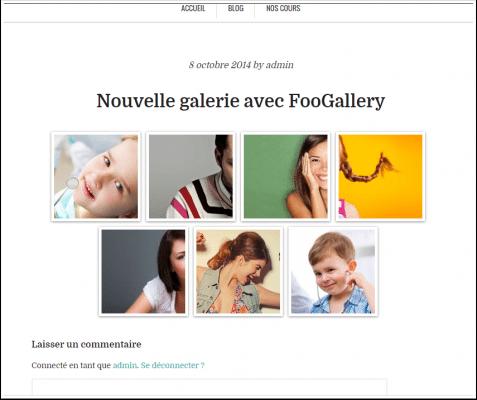 nouvelle-galerie-avec-foogallery