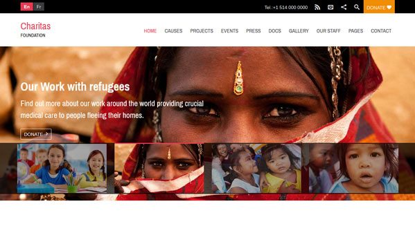 Charitas Un Theme Wordpress Pour Charite Ong Fondation