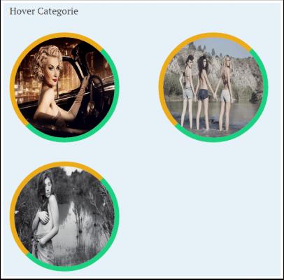 hover-categorie-demo