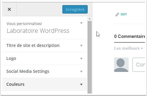 options-de-personnalisation-formation-theme-wordpress
