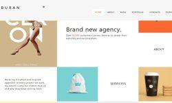 Buran-tema WordPress-to-membuat-a-situs-portofolio-dan-d'entreprise