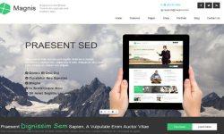 Magnis-tema de WordPress a crear a un sitio web-d'entreprise