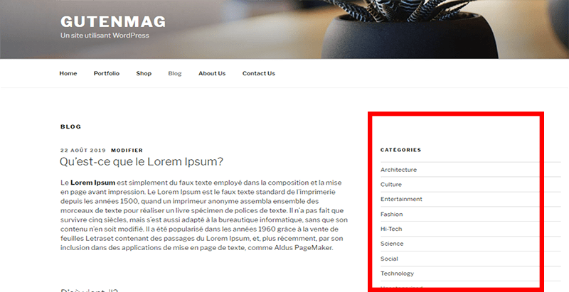 meilleur plugin WordPress - Widget options masquer titre widget blogpascher 3