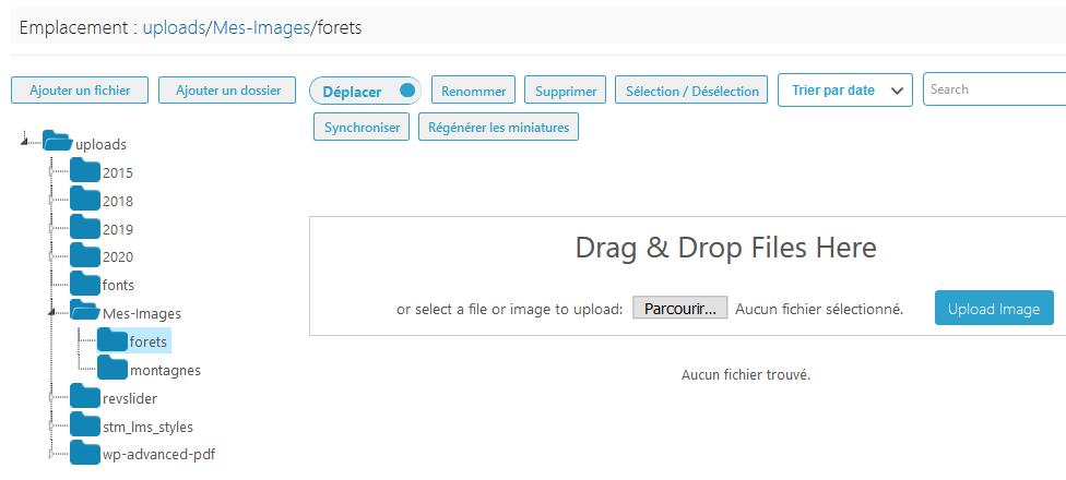 Comment organiser fichiers wordpress dossiers bibliothèque médias blogpascher 5