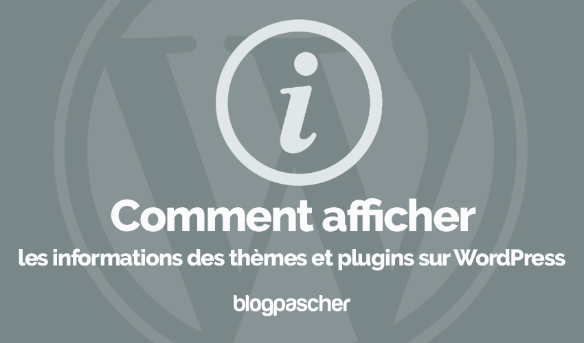 Comment Afficher Informations Themes Plugins Wordpress