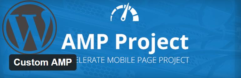 Custom AMP plugin WordPress