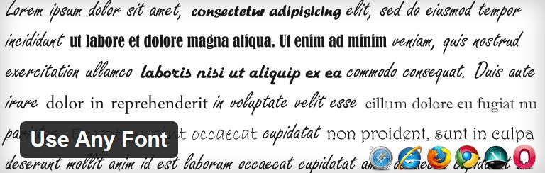sử dụng-bất kỳ-font-plugin WordPress