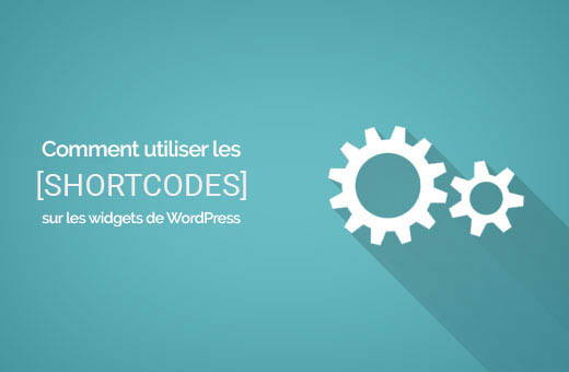 como usar códigos de acesso no wigets WordPress
