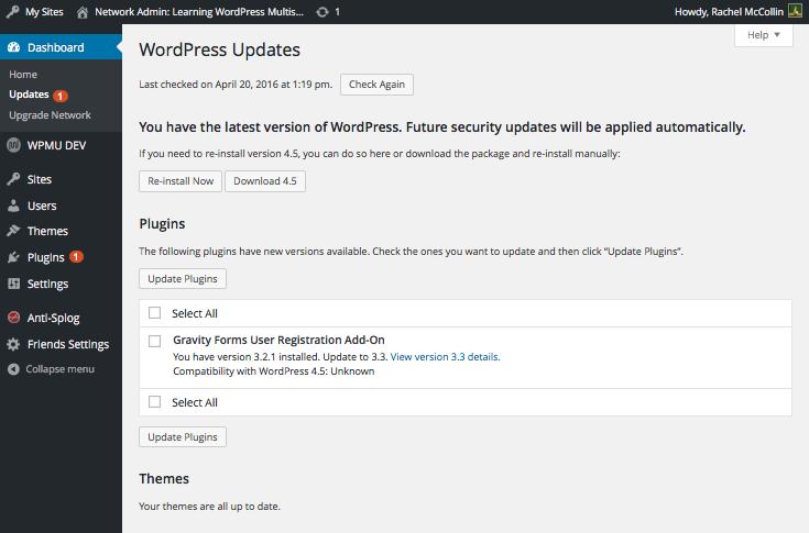 WordPress WordPress Multisite