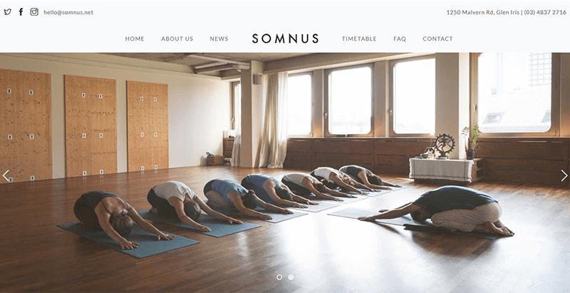 Somnus wordpress theme