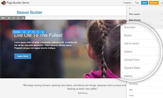 castor-construtor-plugin-wordpress