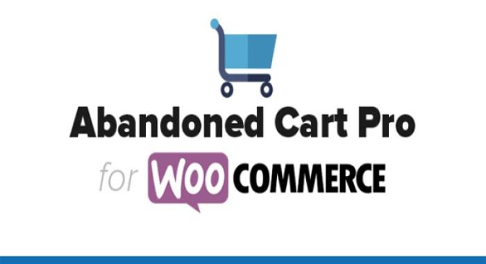 abandoned-cart-pro-for-woocommerce-plugin-woocommerce-panier-abandonne