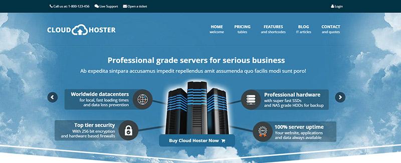 10 temas de WordPress para la empresa de alojamiento web | BlogPasCher