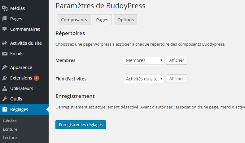 opção-page-wordpress-plugin-BuddyPress