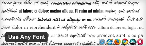 use-any-font-wordpress-plugin