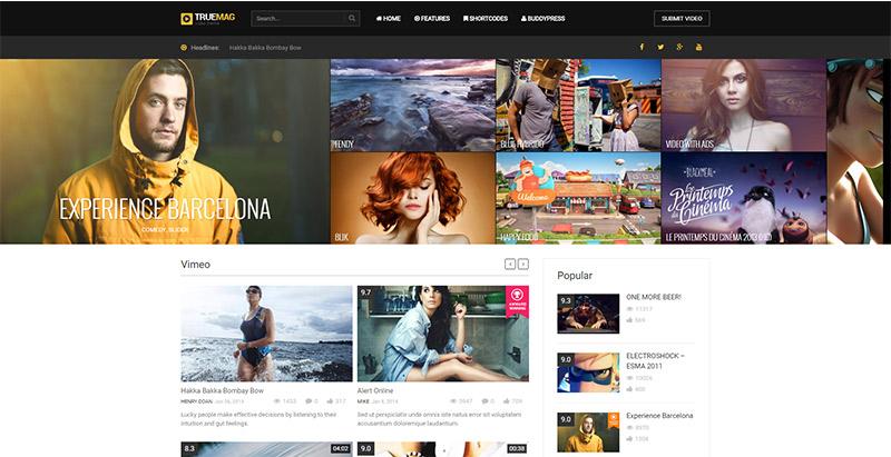 truemag-2-themes-wordpress-adsense-monetiser-site-web-annonces-publicites