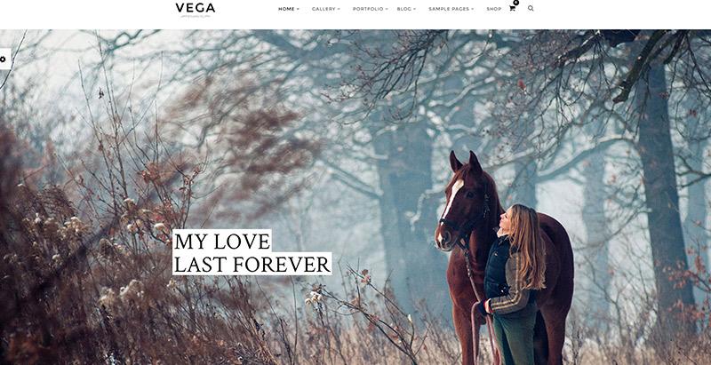 vega-themes-wordpress-creer-site-internet-photgraphe