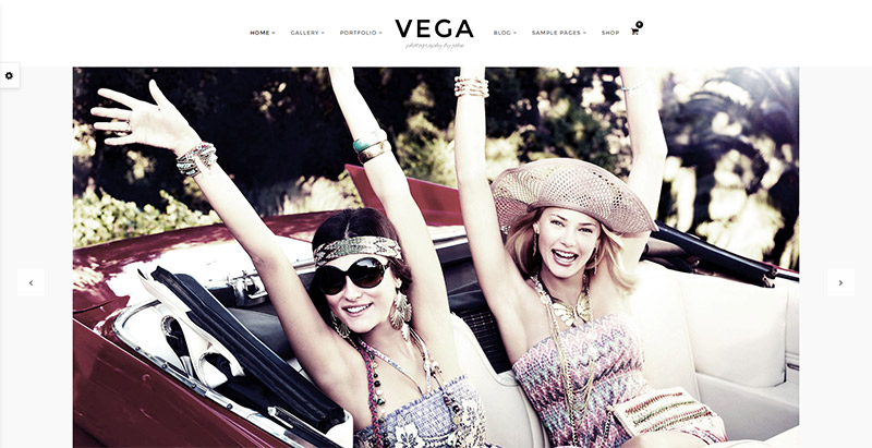vega-themes-wordpress-excellents-blog-photographie-photo-portfolio