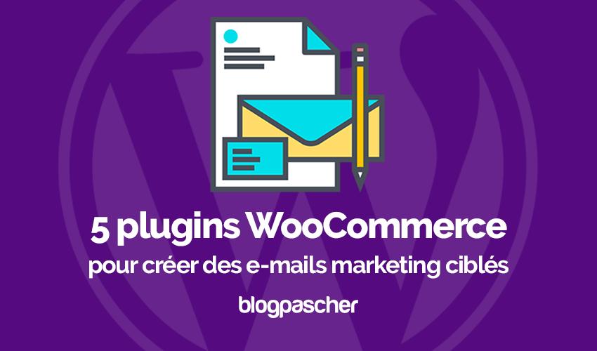 Plugin Woocommerce E Mails Marketing Ciblés