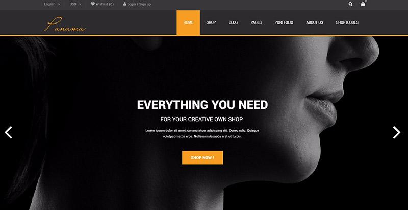 30 WordPress temas para crear una página web | BlogPasCher