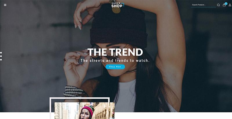 Silver shopl themes wordpress pour creer un site web de ecommerce
