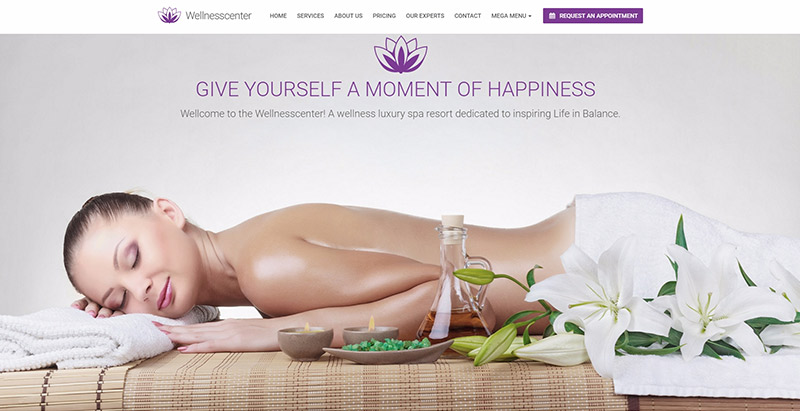 Wellness center themes wordpress creer site web spa salon massage beaute