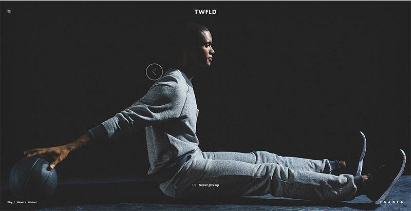Twofold 10 thèmes wordpress au style sombre pour créer un site web