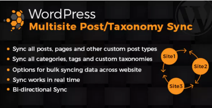 Wordpress multisite posts taxonomies sync