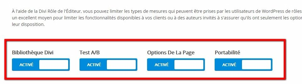 Action de haut niveau divi wordpress