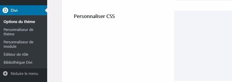 Section personnalisée divi css theme options