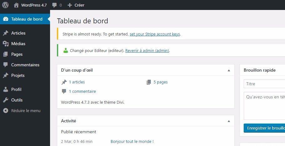 Cómo usar el Editor de roles del tema de Divi WordPress: El tutorial ...