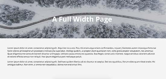 Page avec une pleine largeur