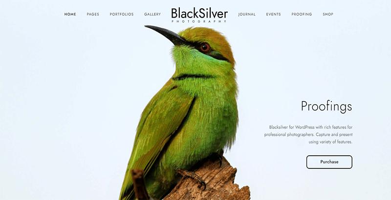 Blacksilver Theme Wordpress Creer Site Web Agence Creative Photographie