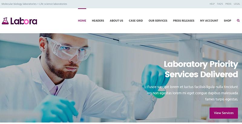 10 thèmes WordPress pour créer un site Web de médecin ou d'hôpital