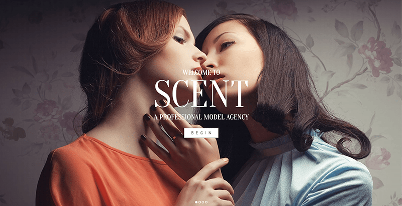Scent themes wordpress creer site web agence top models mannequins fashion