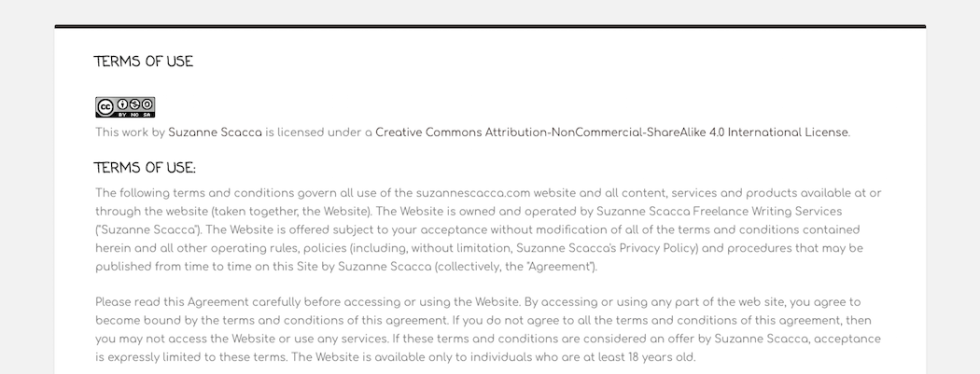 Terms of service example page