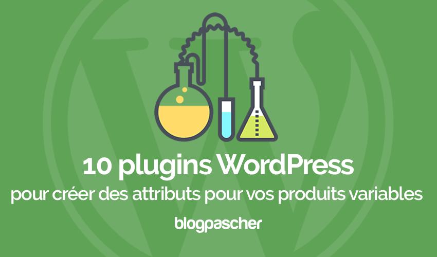 Plugins Wordpress Creer Attributs Variables Produits Ecommerce Woocommerce
