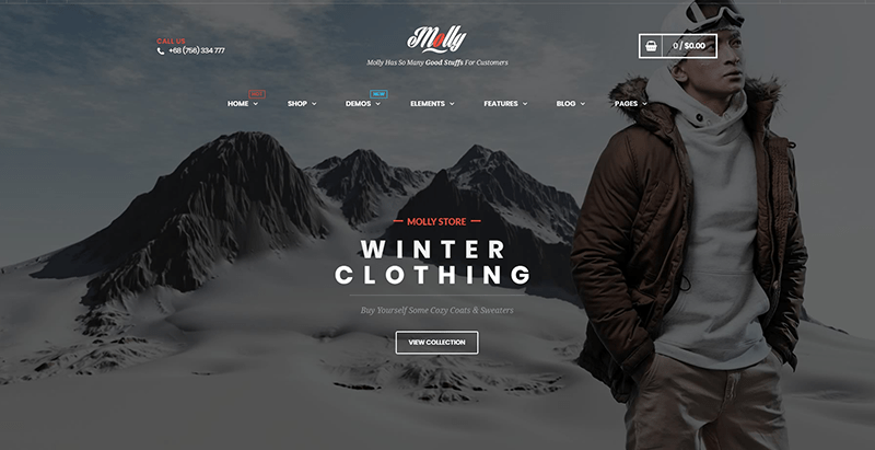 Molly themes wordpress vendre vetements internet site ecommerce