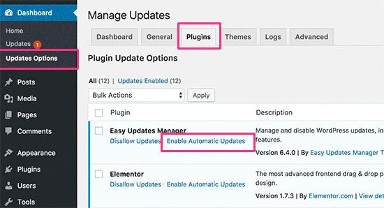 bazı WordPress eklentileri için otomatik güncellemeleri etkinleştir