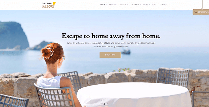 Temas de 10 WordPress para crear un sitio web de viajes | BlogPasCher