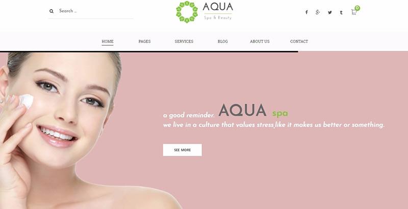 Aqua themes wordpress creer site internet spa salon massage