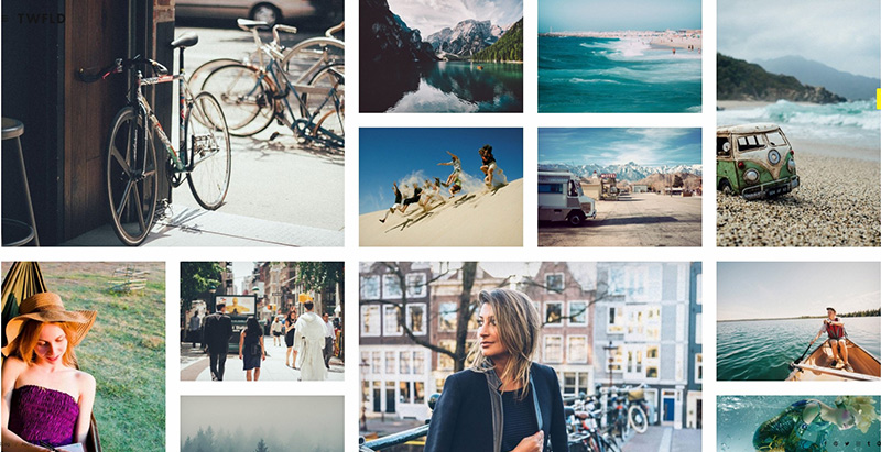 Dois temas wordpress criar website portfólio foto criativa
