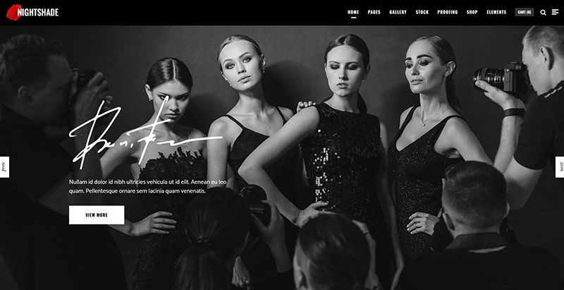 Nightshade themes wordpress creer site web agence creative photographe