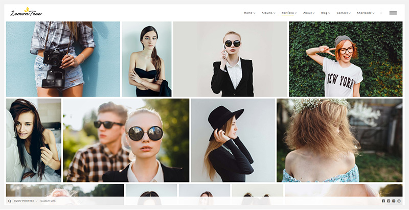 Lemontree themes wordpress creer site web portfolio photographe artiste