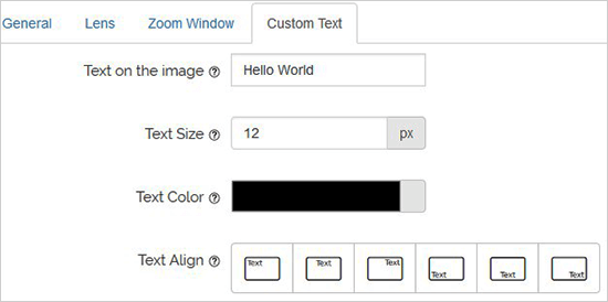 добавить пользовательский текст WordPress.png