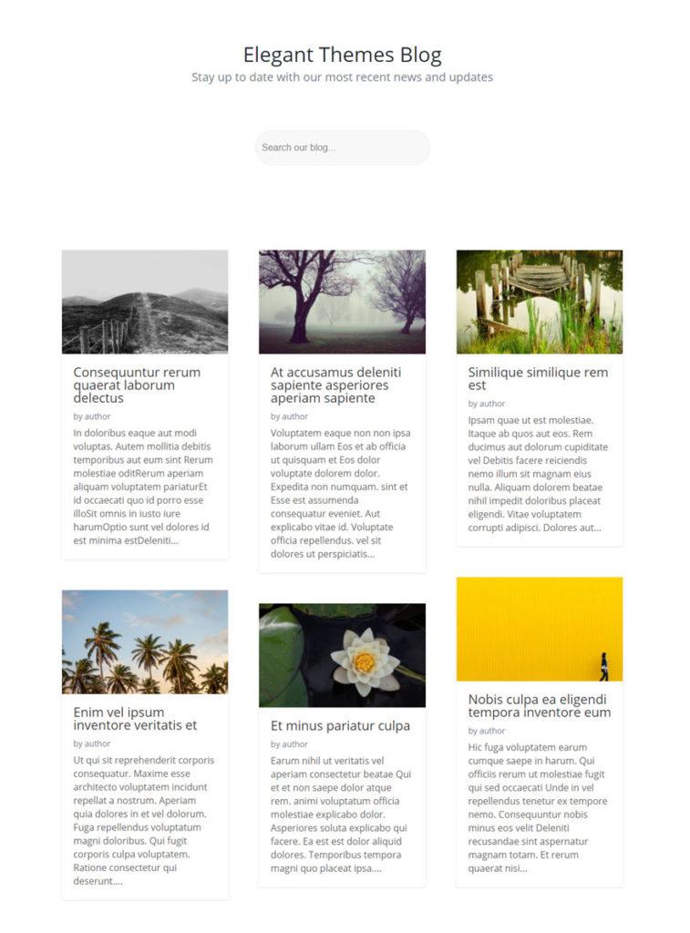 exemple blog avec formulaire de recherche divi.jpg
