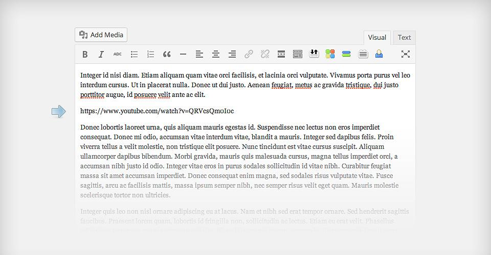 agregar un video wordpress editeur.jpg