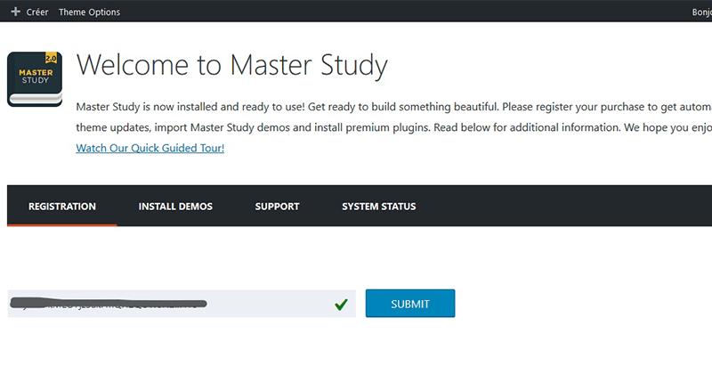 Registration masterstudy theme