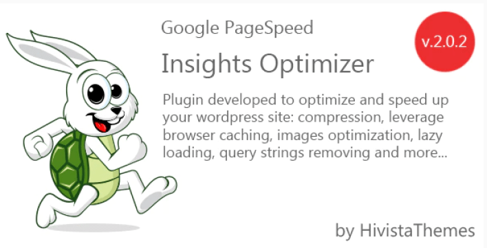 Google pagespeed insights optimizer plugin wordpress
